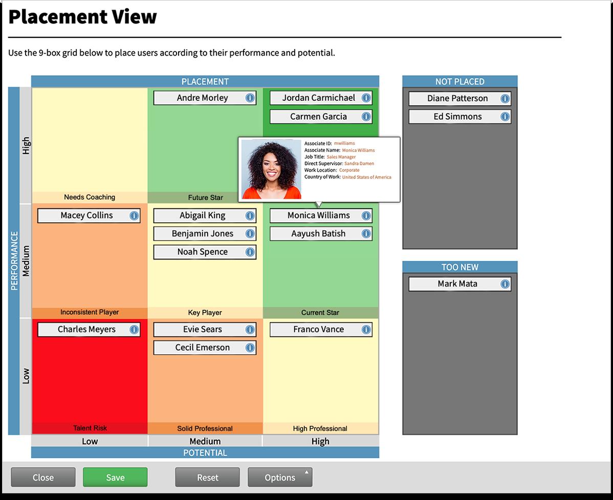 Talent Management placement nine box view.